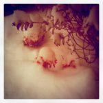 Snow on fake flowers